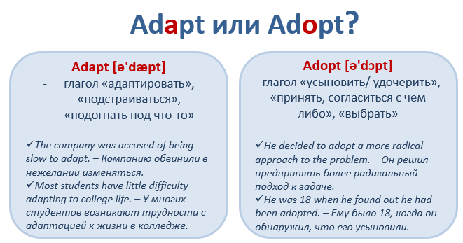va adoption agencies