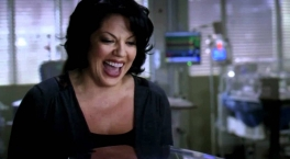 Grey's Anatomy - Callie - The Story