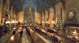 Harry Potter and the Philosopher's Stone - christmas at Hogwarts